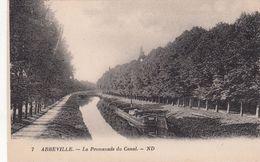 Cp , 80 , ABBEVILLE , La Promenade Du Canal - Abbeville