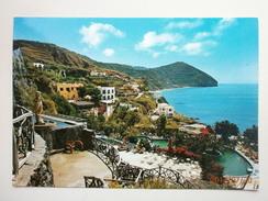 Postcard Ischia  Aphrodite Gardens Postally Used 1980  My Ref B21565 - Napoli (Naples)
