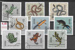 Reptile Lézard Serpent Couleuvre Orvet Triton Crapaud Grenouille - Pologne Entre N°1259 à 1268 1963 O - Reptiles & Batraciens