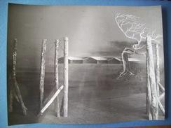 WW2 / PRISONNIERS DE GUERRE / STALAG / OFLAG / PHOTOGRAPHIE GRAND FORMAT / ORIGINALE / 5 - 1939-45