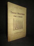 """""""""""TAILLE FRUITIERE Par L'IMAGE"""" Horticulture Agriculture Arboriculture Jardin Fruit Maison Rustique 1946 ! - Garden"""