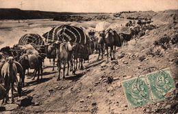 ALGERIE - CARAVANE EN MARCHE DU CAID BEN GANAH - Argelia