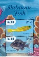 Palau 2016 Animal Fishes - Fische