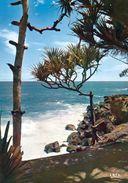 1 AK Insel Reunion * Bords De Mer Vers Les Cascades * Insel Im Indischen Ozean * IRIS Karte * - Reunión