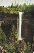 Silver Creek Falls, Salem - Oregon OR - Edward H. Mitchell - Carte N° 505 - Salem