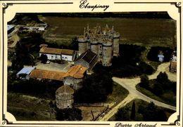 DEUX-SEVRES / LE CHATEAU D'EBAUPINAY / A 40 - Châteaux
