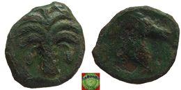 Greek Empire - Carthaginian Sicilo-Punic - AE17 Of Zeugitana (4th - 3rd Century BC), Palm, Horse - Greche