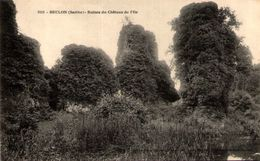 BRULON (Sarthe) - Ruines Du Château De L'Île - Brulon