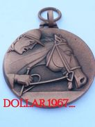 Medaille :Netherlands- Medaille - Indoor Zwolle 1979 ( Paard Met Ruiter )  /  (horse With Rider,  Pays-Bas - Netherland