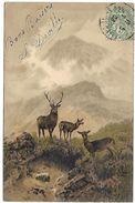CERF Et BICHES - Illustration - Illustrateurs & Photographes