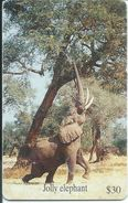 éléphant Elephant Animal Télécarte ZIMBABWE  Phonecard  Karte (S.358) - Zimbabwe