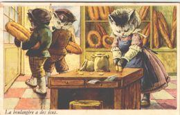 CHAT / LOT  B36 - Katten