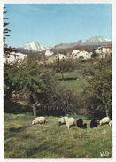 20 - 2B - CALACUCCIA - Vue Partielle - Au Fond, La Paglia Orba Et Les Cinque Frati - Andere Gemeenten