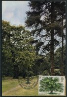 1973 GB Oak Tree Maxicard. First Day Maximum Card - Maximumkarten (MC)
