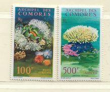 COMORES ( FRCOM - 23 )  1962  N° YVERT ET TELLIER   N°  5/6     N* - Airmail