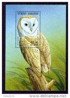 MADAGASCAR  1398  MINT NEVER HINGED SOUVENIR SHEET OF BIRDS ; OWL (   9802 - Madagascar (1960-...)