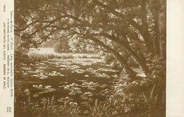 A-17-8182 : SALON DE PARIS.  UNE MATINEE SOUS BOIS. PAR HENRI BIVA - Paintings