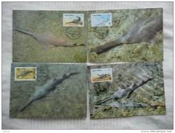 WWF Cape Cabo Kap Verde Cap Vert Small-toothed Sawfish Sägefisch 1997 CM MK MC Maxi Maximum Card Carte Maximumkarte - Maximum Cards