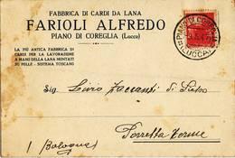 0836 01 LUCCA PIANO DI COREGLIA FARIOLI FABBRICA CARDI DI LANA - 1946-.. République