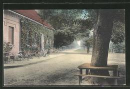 AK Burg, Strassenpartie Am Cafe Forsthaus - Burg