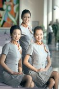 T80-003  ]  Flight Attendants Cabin Attendants Stewardesses Hostesses Cabin Crew , China Pre-paid Card, Postal Statioery - Other