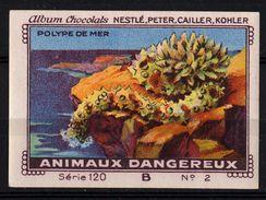 Nestlé - 120B - Animaux Dangereux, Dangerous Animals - 2 - Polype De Mer - Nestlé