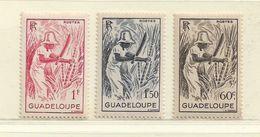 GUADELOUPE  ( D18 - 2920 )  1947   N° YVERT ET TELLIER  N° 200/202   N** - Unused Stamps