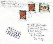 Costa Rica 1991 San Jose Habitat Year Terrestrial Bromeliad Aechmea Magdalenae Express Cover - Costa Rica