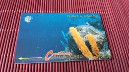 2 Phonecard Turks & Caicos Demo Card Without Control Number Rare - Turks And Caicos Islands