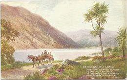 Z3284 Killarney's Lakes - Nice Stamps Timbres Francobolli / Viaggiata - Kerry