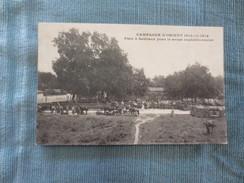 Salonique  Campagne D'orient  Parc à Bestiaux Pour Le Corps Expéditionnaire - Guerre 1914-18
