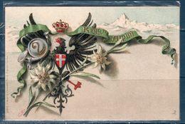 2 ° Reggimento Alpini  -- Nuova -- - Régiments