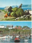 FAROE ISLANDS Olavsoka Foto Hermann Jacobsen 2 Cards - Faroe Islands