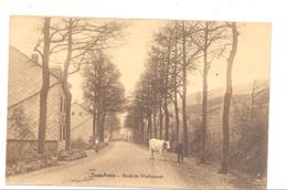 TROIS - PONTS - Route De Werbomont - Fermier, Vache  (1238)b209 - Trois-Ponts