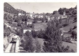 I 32010 OSPITALE DI CADORE, Panorama, Ferrovia, 1960 - Other Cities