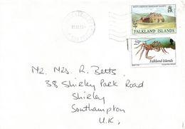 Falkland Islands 1995 Port Stanley Missionary House Spider Crab Cover - Falklandeilanden