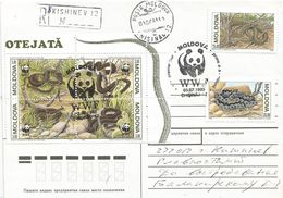 Moldova 1993 Chisinau WWF Snake Registered FDC Cover - W.W.F.