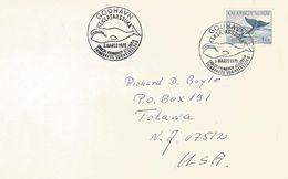 Greenland 1970 Godhavn Whale FDC Cover - Brieven En Documenten
