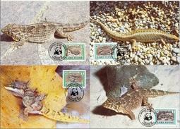 Cabo Verde 1986 WWF Geckos & Skinke (Lacertilia) Michel 500-503 Auf 4 MK (Maximumkarten) - Rhinozerosse