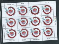 Tonga 2000 Millennium Clock & Dove Set Of 4 X 12 In 4 Full Sheets Full Margins And Imprints MNH - Tonga (1970-...)