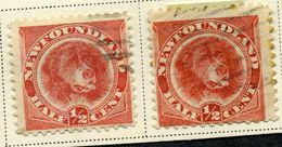 "1887 Canada Newfoundland (Set Of Two) SC #56 Rose Red""Newfoundland Dog""USED VF - 1851-1902 Reign Of Victoria"