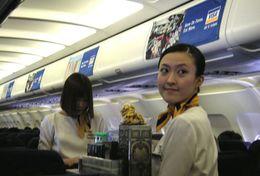 T80-106 ]  Flight Attendants Air Attendants Stewardesses Hostesses Cabin Crew , China Pre-paid Card, Postal Stationery - Jobs