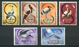 159 SOMALIE Italienne 1959 - Yvert 268/71 A 77/78 - Oiseau Echassier - Neuf ** (MNH) Sans Trace De Charniere - Somalia