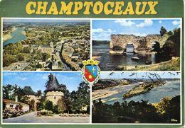 N°54276 GF-cpsm Champtoceaux -multivues- - Champtoceaux