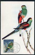 Antilles Néerlandaises - Carte Maximum 1959 - Oiseau - Curaçao, Antille Olandesi, Aruba