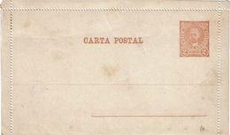 PUY15/1AM - ARGENTINE CARTE LETTRE NEUVE - Entiers Postaux