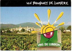 Vins Du Luberon Wijn Wein - Vignes
