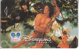 PASS - DISNEY - PARIS *** DISNEY LAND & TARZAN *** - Disney