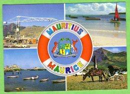 ILE MAURICE - Port-Louis Harbour - Champ De Mars - Mauritius