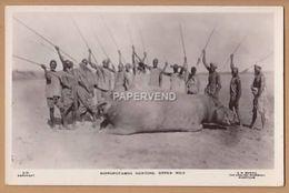 Sudan   Hippopotamus Hunting  Upper Nile    RP    Su532 - Sudan